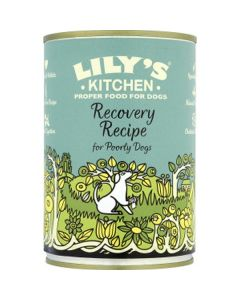 Lilys Kitchen Recovery Recipe 400g