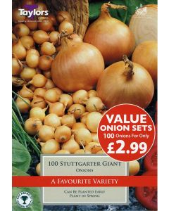 Taylors Bulbs: Value Onion Stuttgarter Giant