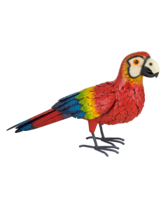 Red Macaw Parrot Large