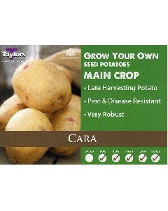 Taylors Bulbs: Cara 2kg seed Potato's