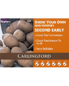 Taylors Bulbs: Carlingford 2kg seed Potato's