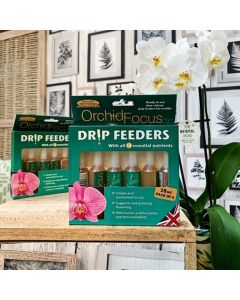 Orchid Focus Drip Feeders