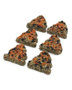Carrot and Elderberry Trees 6pc 80g