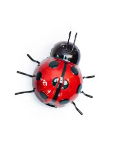 Fountasia Ladybird - Small