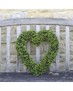 Boxwood Heart