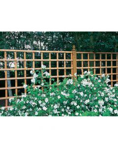 Heavy Duty Trellis 6ft x 6ft