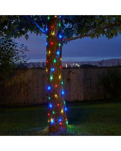 Firefly String Lights - 100 Multi Coloured LEDs