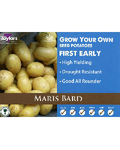 Taylors Bulbs: Maris Bard 2kg seed Potato's
