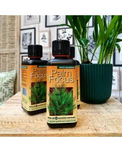 Palm Focus 300ml
