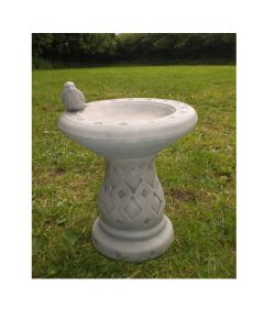 Small Wren Bird Bath