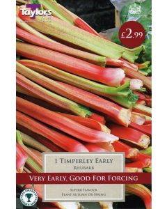 Taylors Bulbs: Rhubarb Timperley Early